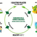 i 4 pilastri healthy habits